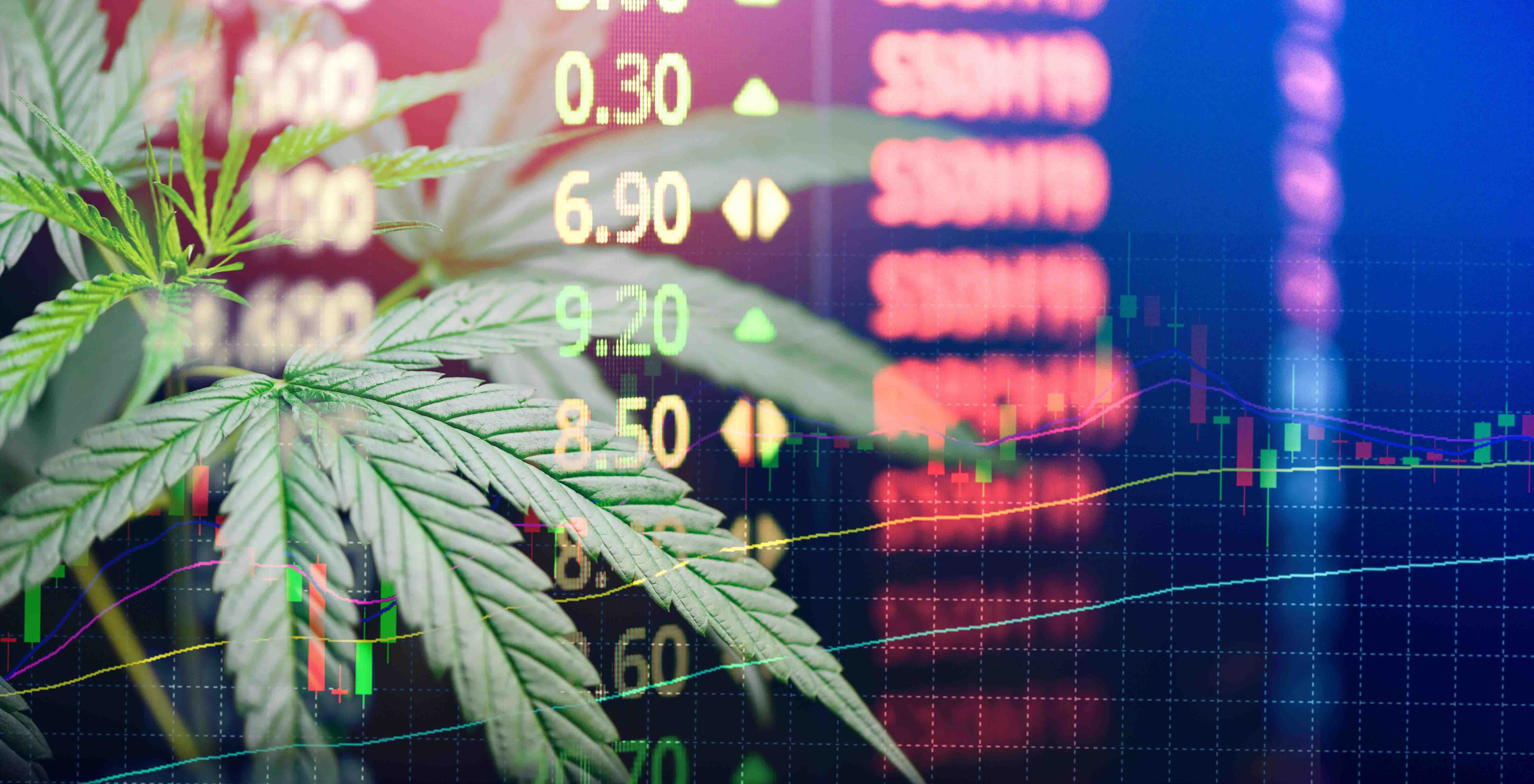 Cannabis over stock ticker