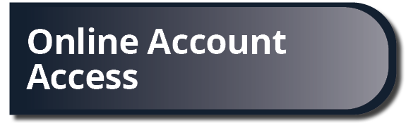 Online Account Access